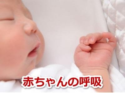 赤ちゃん 呼吸