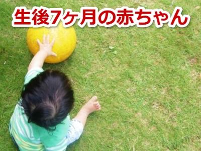 生後七ヶ月の赤ちゃん
